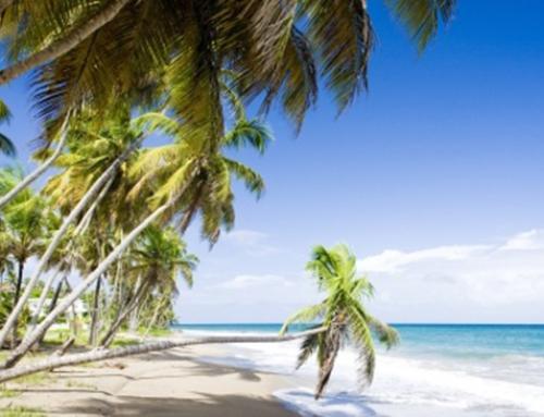 Grenada – An Active Honeymoon Option